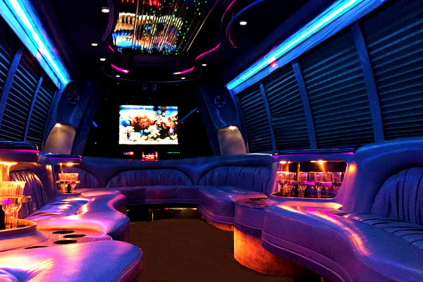 18 passenger party bus rental